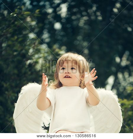 Little Angel Claps His Hands