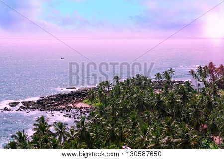 Beautiful sunrise pink clouds in the blue sky. Palm trees and tropical vegetation on the coast paradise sandy beach and turquoise ocean.