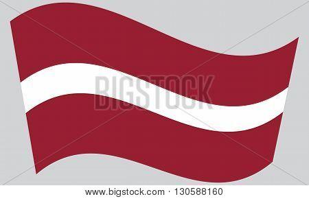 Flag of Latvia waving on gray background