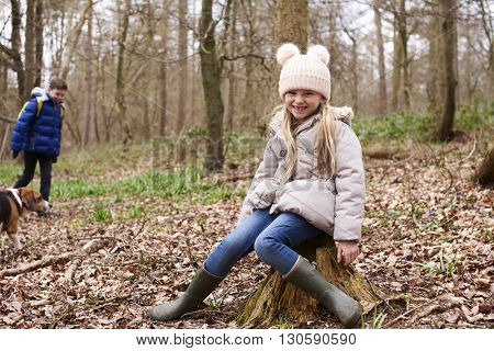 Young girl sitting on a tree stump in a forest