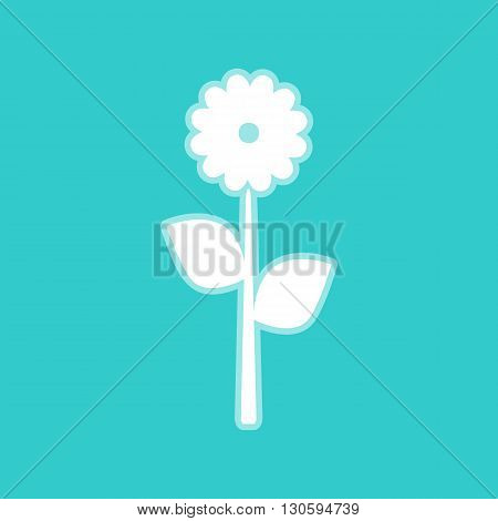 Flower sign. White icon with whitish background on torquoise flat color.