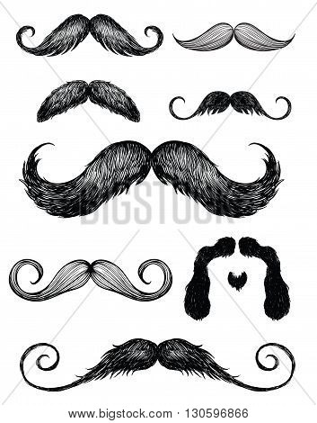 Hand drawn detailed mustache Vector Elements Set