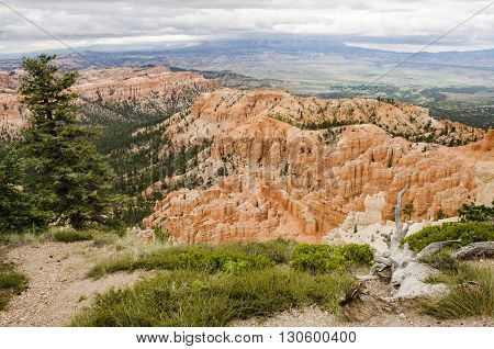 Hoodoos with pine trees and chipmunk at Bryce Canyon National Park in Utah.