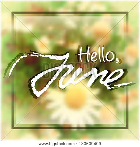 Welcoming card with white hand written lettering Hello June on natural floral camomile blurry background. Vector illustration