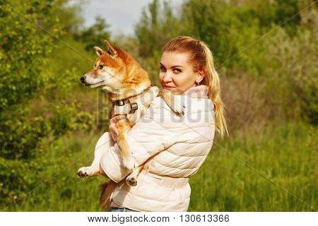 Girl holds on hands dog Shiba Inu. Walking with a pet. Pedigree dog.