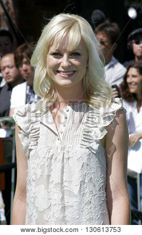 Amy Poehler at the Los Angeles premiere of 'Shrek 3' held at the Mann Village Theater in Westwood, USA on May 6, 2007.