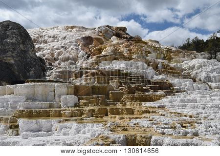 the thermal terraces at yellowstone national park