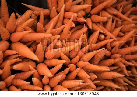Fresh carrots being plucked off from the trees and ready to be sold in the market at Rajamala in Kochi, Kerala. Carrot is an important vegetable and is used for several cuisines.