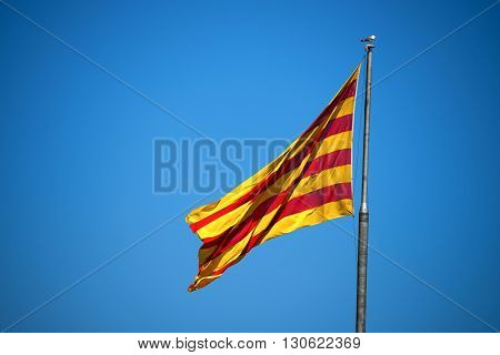 Catalan flag with pole blowing in the wind on clear blue sky