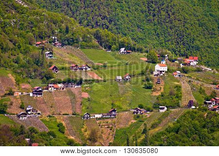 Hills of Plesivica vineyards and cottages northern Croatia