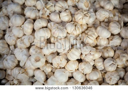 Selection of fresh garlic cloves. Traditional thai market.