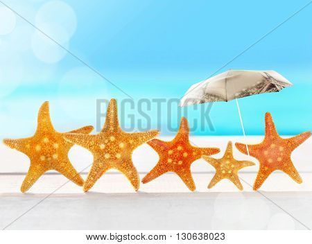 starfish with parasol on the sandy beach