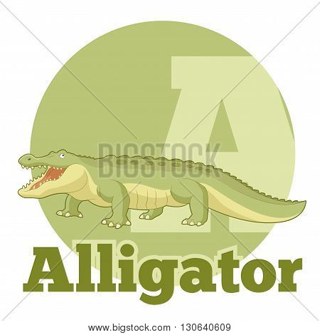 Vector image of the ABC Cartoon Alligator