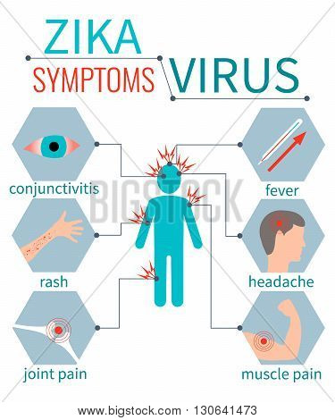 Zika virus symptom icons - fever, headache, muscle pain, joint pain, red eyes, rash. Zika virus infographic elements. Zika virus disease. Zika virus design template. Isolated vector illustration.
