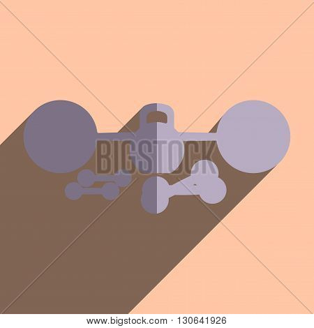 Flat icons with shadow of barbell, athletic dumbbell. Vector illustration
