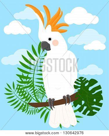 Parrots Cartoon Vector Illustration. Parrot set Exotic birds bird of paradise