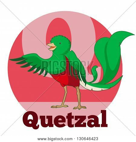 Vector image of the ABC Cartoon Quetzal