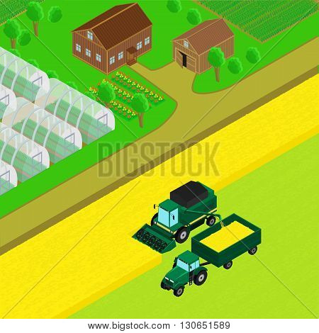 Vector illustration. Farm house with barn country road field of wheat. Combine and tractor trailer harvest wheat. The greenhouse crops. infographics isometric