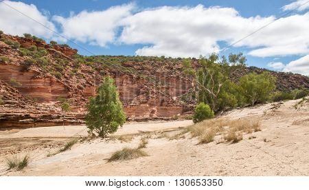 Native plants, sand and tumblagooda sandstone cliffs in the valley of the Murchison River gorge in Kalbarri National Park under a blue sky with clouds in Western Australia.