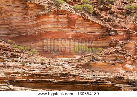 Tumblagooda red and white banded sandstone cliffs line the Murchison River gorge in Kalbarri National Park in Western Australia.