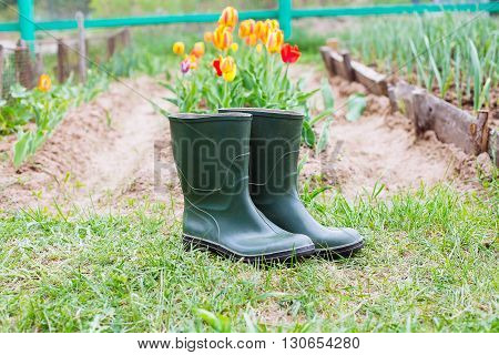 Rubber Boots On Grass - Spring Concept