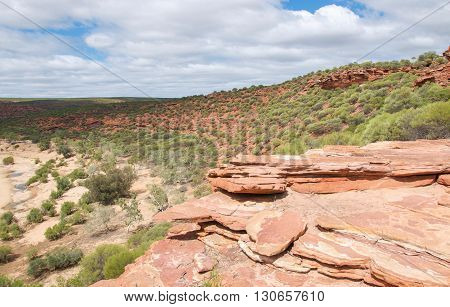 View from red sandstone bluff overlooking the Murchison River gorge with native flora in Kalbarri National Park under a blue sky with clouds in Western Australia.