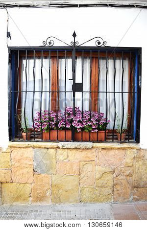 Typical barred window with flowers in Spain