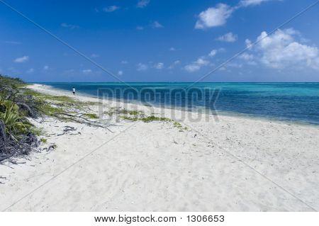 Tropical Island Beach