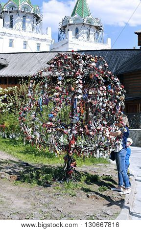 MOSCOW, RUSSIA - MAY 7, 2016: Girl attaches a commemorative ribbon on iron decorative wedding tree