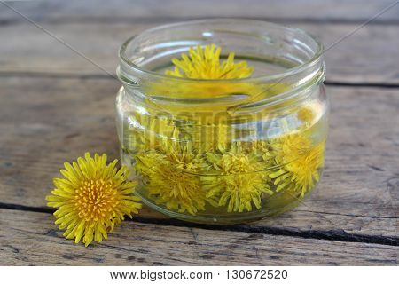 Yellow dandelion flower in a glass jar with water on the background of the wooden planks. Tincture