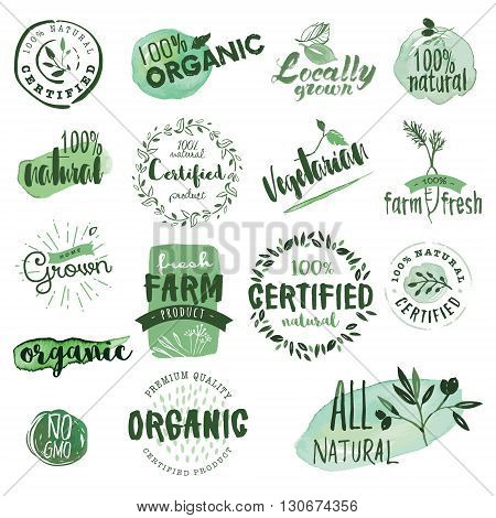 Organic food labels and badges. Hand drawn watercolor vector illustration set for food and drink, restaurant, natural products.