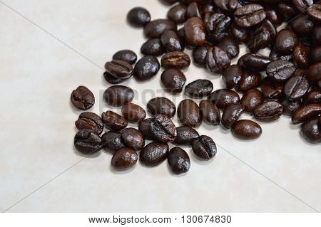 coffee bean on the white tile floor