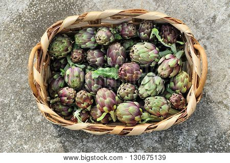 raw artichoke italy health organic vegetarian ingredient