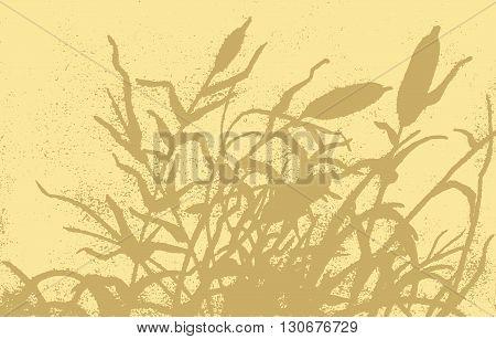Reed Vector Illustration.