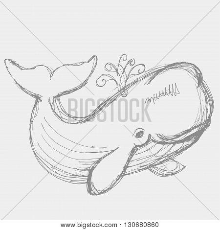 Whale Illustration.