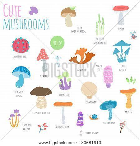 Mushrooms set isolated on white background. Cute cartoon mushrooms with signature. Hand-drawn vector illustration