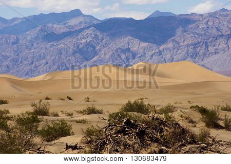 Sand dunes and scrub against a massive desert mountain landscape in Death Valley