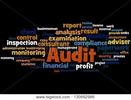 Audit, Word Cloud Concept 2