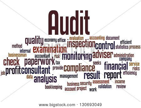 Audit, Word Cloud Concept 5