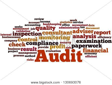 Audit, Word Cloud Concept 7