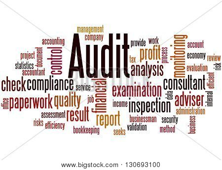 Audit, Word Cloud Concept 8