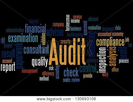 Audit, Word Cloud Concept 9