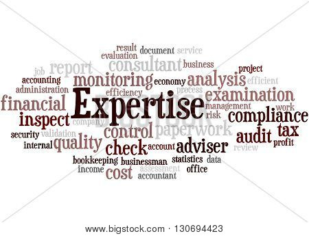 Expertise, Word Cloud Concept