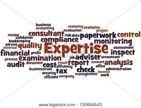 Expertise, Word Cloud Concept 8