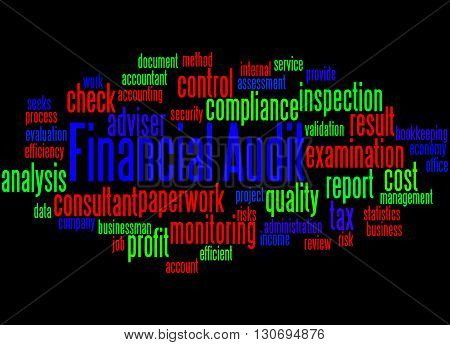 Financial Audit, Word Cloud Concept 2