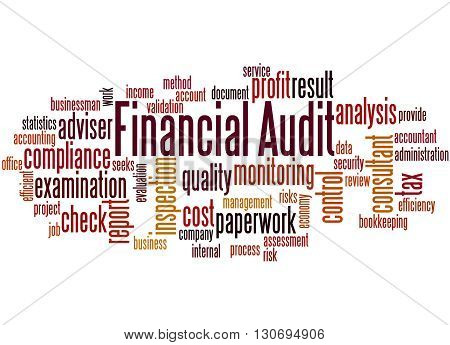 Financial Audit, Word Cloud Concept 4