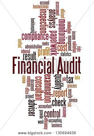 Financial Audit, Word Cloud Concept 7