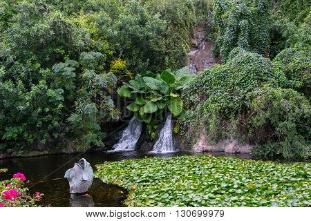 Small waterfall in the park at Tenerife island, Spain