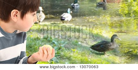 Child At Duck Pond With Crackers