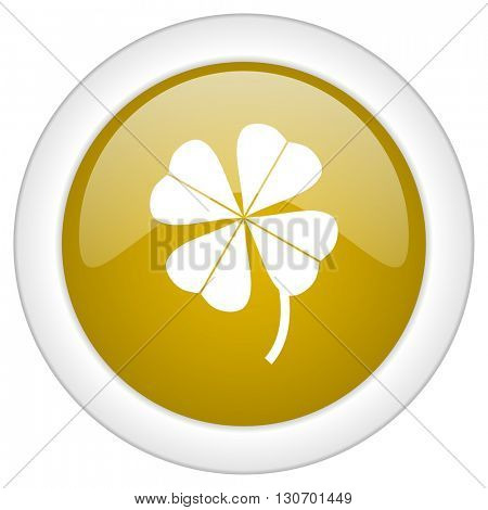 four-leaf clover icon, golden round glossy button, web and mobile app design illustration